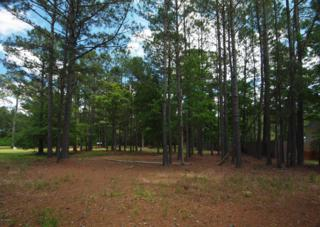 218  Mulligan Drive  17, Cape Carteret, NC 28594 (MLS #15-2625) :: Star Team Real Estate