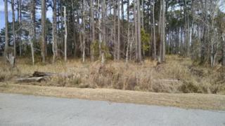 204  Leeward Ln  116, Beaufort, NC 28516 (MLS #15-913) :: Star Team Real Estate