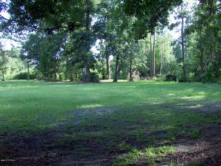 220  Water Oak Drive  4, Newport, NC 28570 (MLS #12-3616) :: Star Team Real Estate
