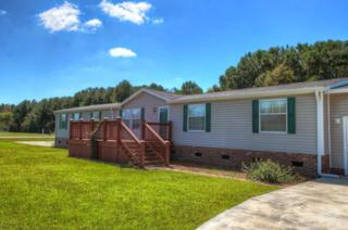 304  Clearwater Drive  , Newport, NC 28570 (MLS #14-5119) :: Star Team Real Estate