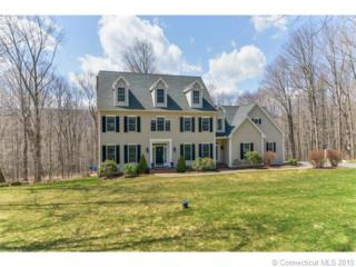 9  Homestead Ln  , Canton, CT 06019 (MLS #G10038311) :: Carbutti & Co Realtors