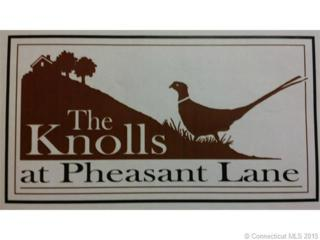 102  Pheasant  , Granby, CT 06060 (MLS #G10049060) :: Carbutti & Co Realtors