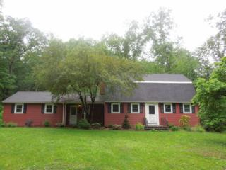164  Great Hollow Rd  , Woodbury, CT 06798 (MLS #W10038331) :: Carbutti & Co Realtors