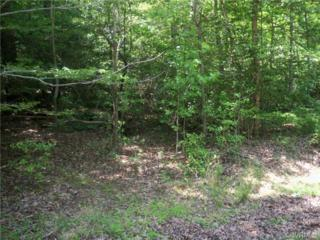 000  Cooks Mill Road  , New Kent, VA 23089 (MLS #1413175) :: Exit First Realty