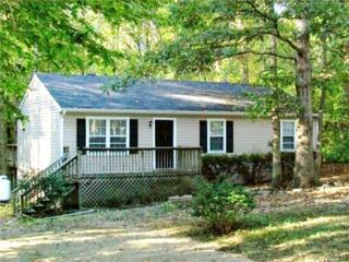 11910  Goldenbrook Drive  , Chesterfield, VA 23832 (MLS #1416452) :: Exit First Realty
