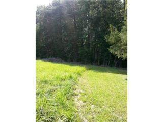 0  Off Old Church Road  , New Kent, VA 23124 (MLS #1418634) :: Exit First Realty