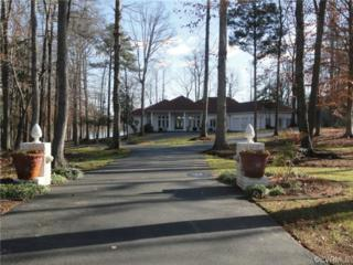 12800  Chesdin Point Court  , Chesterfield, VA 23838 (MLS #1420447) :: Exit First Realty