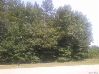 15007  Chesdin Green Way  , Chesterfield, VA 23838 (MLS #1422016) :: Exit First Realty