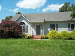 20306  Hickory Branch Drive  , Chesterfield, VA 23803 (MLS #1424036) :: Exit First Realty