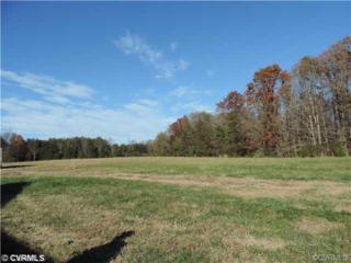 2250  Pony Farm Road  , Goochland, VA 23102 (MLS #1424258) :: Exit First Realty