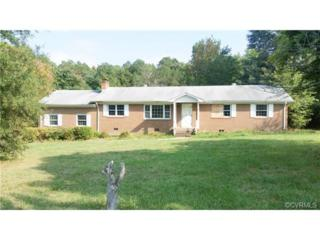 4511  Otterdale Road  , Moseley, VA 23120 (MLS #1426454) :: Exit First Realty