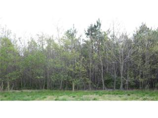0  Cooks Mill Road  , New Kent, VA 23089 (MLS #1427580) :: Exit First Realty