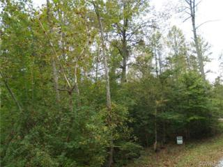 TBD  Hilton Woods Drive  , New Kent, VA 23124 (MLS #1428001) :: Exit First Realty