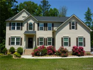 5212  Timsbury Pointe Drive  , Chester, VA 23831 (MLS #1429576) :: Exit First Realty