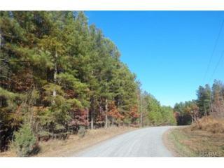 610  Coles Creek Lane  , New Canton, VA 23123 (MLS #1431321) :: Exit First Realty