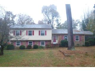4101  Carafe Drive  , North Chesterfield, VA 23234 (MLS #1431417) :: Exit First Realty
