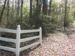 19201  Rosewood Lane  , Chesterfield, VA 23834 (MLS #1431735) :: Exit First Realty