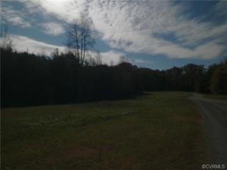 0  Lea Anna Lane  , Maidens, VA 23102 (MLS #1431747) :: Exit First Realty