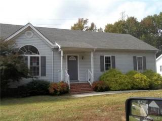 20306  Hickory Branch Drive  , Chesterfield, VA 23803 (MLS #1432096) :: Exit First Realty