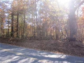 13609  Branders Bridge Rd  , Chester, VA 23831 (MLS #1433353) :: Exit First Realty