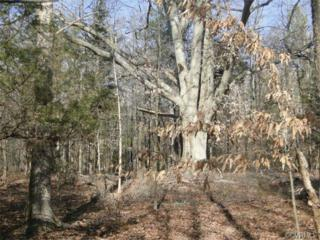 0000  Old River Trail  , Powhatan, VA 23139 (MLS #1433356) :: Exit First Realty