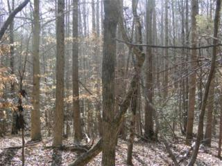 0000  Old River Trail  , Powhatan, VA 23139 (MLS #1433357) :: Exit First Realty