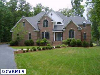 15512  Chesdin Landing Court  , Chesterfield, VA 23838 (MLS #1433635) :: Exit First Realty