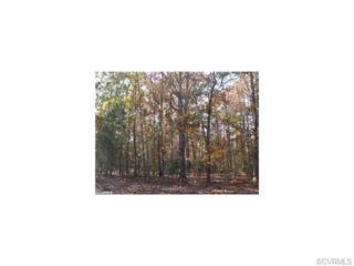 100  Big Buck Ct  , New Kent, VA 23124 (MLS #1501078) :: Exit First Realty