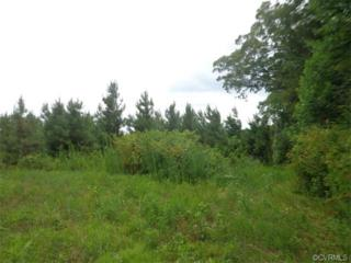 0  Banks Town Road  , St Stephens Church, VA 23148 (MLS #1502699) :: Exit First Realty