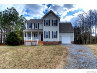 6400  Autumn Mist Way  , Chesterfield, VA 23832 (MLS #1502774) :: Exit First Realty