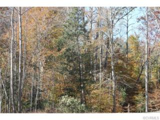 2665-A  Little Creek Dam Road  , Toano, VA 23168 (MLS #1505956) :: Richmond Realty Professionals