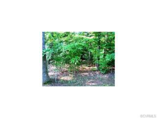 13639  Cedar Creek Road  , Chesterfield, VA 23838 (MLS #1510494) :: Exit First Realty