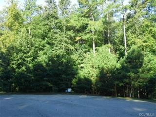 13468  River Otter Road  , Chesterfield, VA 23838 (MLS #1511048) :: Exit First Realty