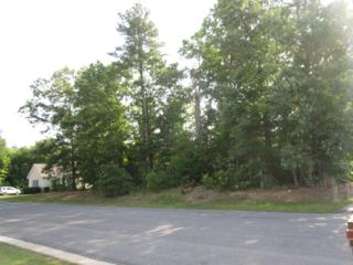 21005  Hampton Avenue  , South Chesterfield, VA 23803 (MLS #1514764) :: Exit First Realty