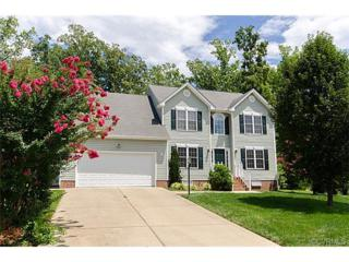 13918  Spyglass Hill Circle  , Chesterfield, VA 23832 (MLS #1419621) :: Exit First Realty