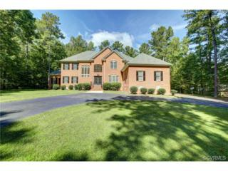 13406  Chesdin Landing Drive  , Chesterfield, VA 23838 (MLS #1427082) :: Exit First Realty