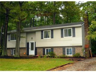 6537  Pebblespring Drive  , North Chesterfield, VA 23234 (MLS #1421878) :: Exit First Realty
