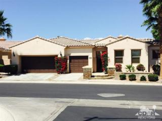 81566  Camino El Triunfo  , Indio, CA 92203 (MLS #215015952) :: The Jelmberg Team