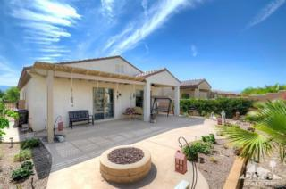 81518  Avenida Viesca  , Indio, CA 92203 (MLS #215011424) :: The Jelmberg Team
