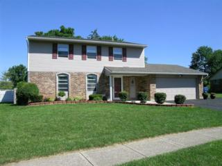 7007  Pineview Dr  , Huber Heights, OH 45424 (MLS #588165) :: The Gene Group