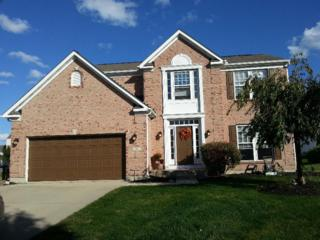 50  Haley Ct  , Springboro, OH 45066 (MLS #598230) :: Denise Swick and Company