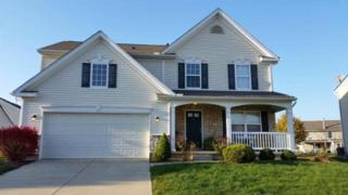 2710  Jenny Marie Dr  , Xenia, OH 45385 (MLS #598343) :: The Gene Group