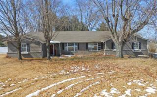 8779  Bunnell Hill Rd  , Springboro, OH 45066 (MLS #604286) :: The Gene Group