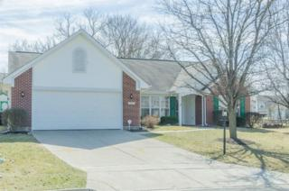1176  Katy Meadow Ct  , Fairborn, OH 45324 (MLS #605238) :: The Gene Group