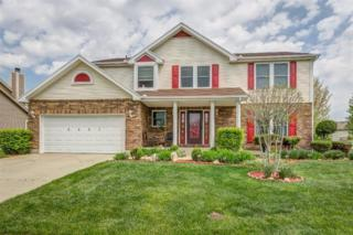 6447  Pheasant Finch Dr  , Dayton, OH 45424 (MLS #609311) :: Denise Swick and Company
