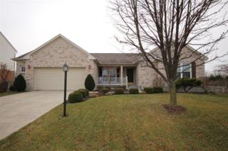 31  Dinsley Pl  , Springboro, OH 45066 (MLS #600436) :: Denise Swick and Company