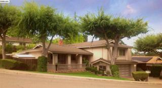 254  Holiday Hills Dr  , Martinez, CA 94553 (#40672297) :: The Bennett Team