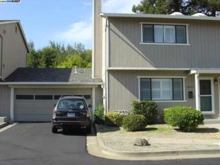 20273  Forest Avenue  , Castro Valley, CA 94546 (#40674057) :: Dave Higgins and Carla Higgins - The Grubb Company