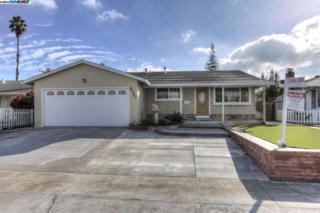 4720  Selkirk Street  , Fremont, CA 94538 (#40681231) :: Dave Higgins and Carla Higgins - The Grubb Company