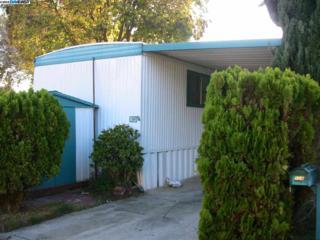 104  Brook Terrace  , Fremont, CA 94538 (#40681427) :: Dave Higgins and Carla Higgins - The Grubb Company